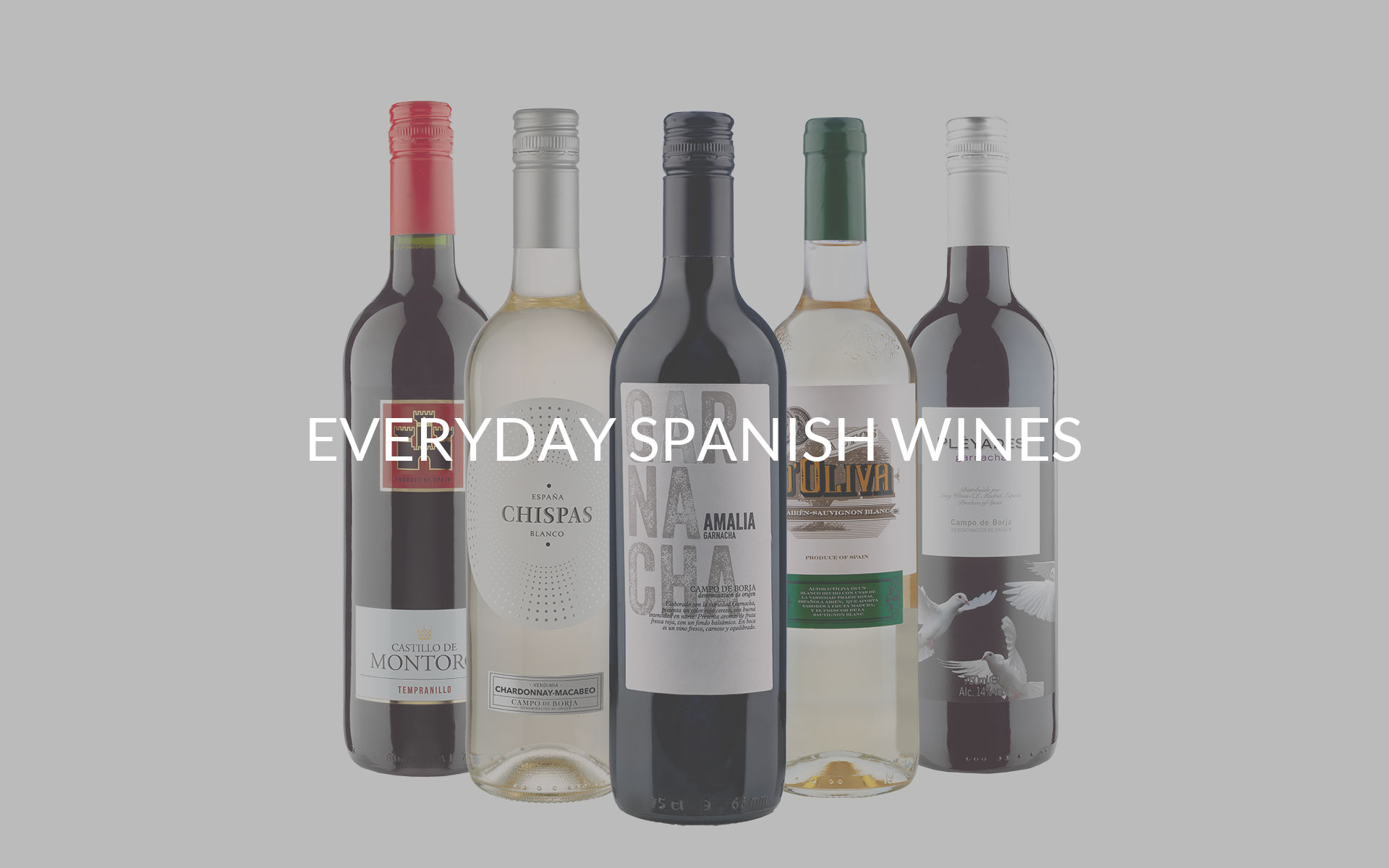 Long Wines | Award winning wines from Spain